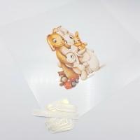 """Комплект / Ацетатный лист с метрикой """"Семья заек"""", 25*25 см., двухсторонний"""