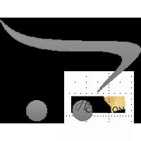 _Двухслойный переплетный кожзам (экокожа) для горячего тиснения 25*46 см., белый / графит
